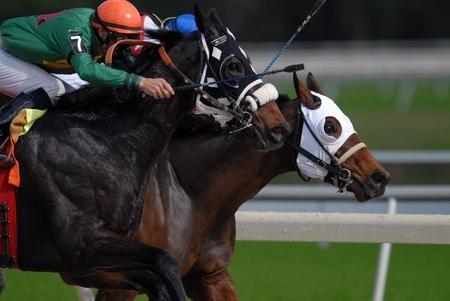 gokken in duitsland oa op paardenrennen